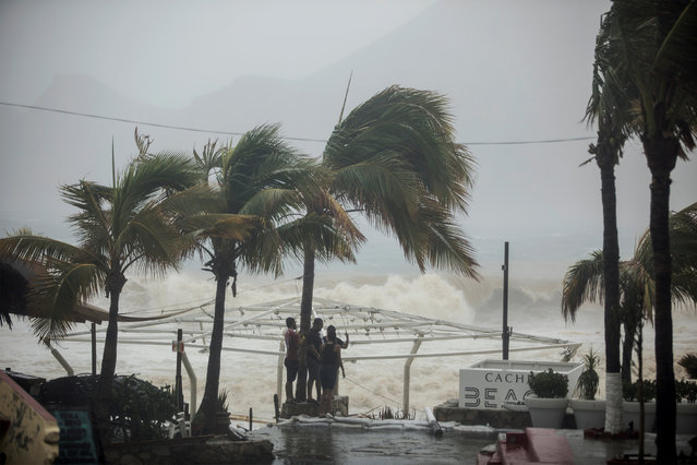 People stand next to swaying palm trees following the passing of Tropical Storm Lidia in Los Cabos, Mexico, August 31, 2017. (Photo by Fernando Castillo/Reuters)