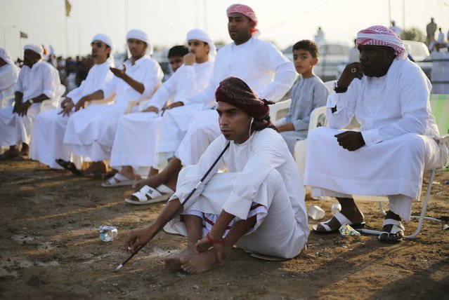 Men watch a bullfight in the eastern emirate of Fujairah October 17, 2014. (Photo by Ahmed Jadallah/Reuters)