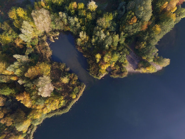An aerial view of autumn trees along the shore of a quarry pond in Cologne, Germany, 02 November 2015. (Photo by Henning Kaiser/EPA)