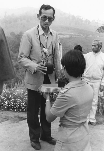 In this February 16, 1981, file photo, Thai King Bhumibol Adulyadej receives a small plant from a Thai woman as he makes a visit to one of his crop substitution projects in Northern Thailand. The king's time in the countryside probably did much to shape his idealized vision of Thailand, one more rooted in a self-sufficient agricultural society than urban aspirations and values that were taking hold. (Photo by Jeff Robbins/AP Photo)