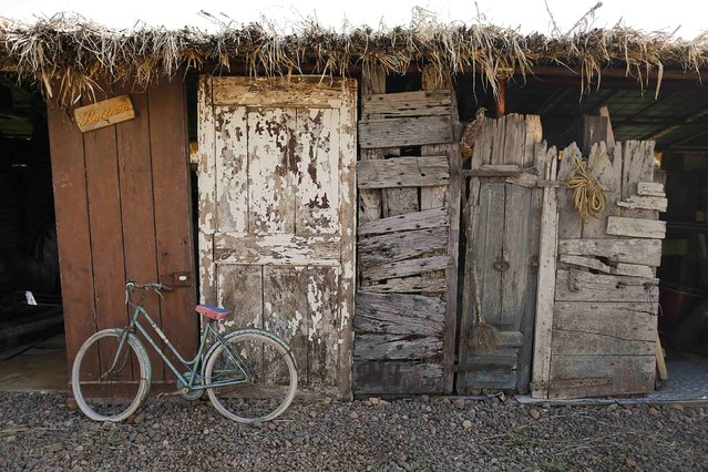 An old bicycle and old doors of different ages are seen in a storage of the Museum of Italian collector Domenico Agostinelli in Dragona, near Rome, October 30, 2014. (Photo by Tony Gentile/Reuters)