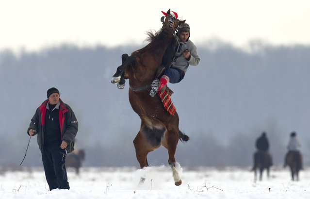 A man struggles to control his horse before a traditional Epiphany celebration race in Pietrosani, Romania, Tuesday, January 6, 2015. According to the local Epiphany traditions, following the religious service, villagers get their horses blessed with the Holy water then compete in a race. (Photo by Vadim Ghirda/AP Photo)