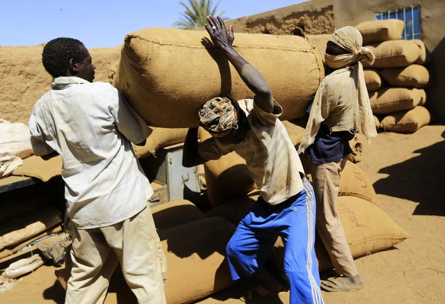 Workers carry a sack at a snuff tobacco factory in el-Fasher, in North Darfur February 5, 2015. (Photo by Mohamed Nureldin Abdallah/Reuters)
