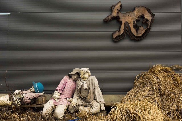 Scarecrows sit in front of a shed in the mountain village of Nagoro on Shikoku Island in southern Japan February 24, 2015. (Photo by Thomas Peter/Reuters)