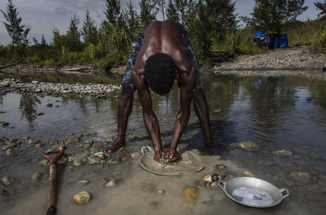 A illegal gold miner of Kamoro people, Tinus, sift through sand and rock as they pan for gold on February 4, 2017 in Timika, Papua Province, Indonesia. (Photo by Ulet Ifansasti/Getty Images)