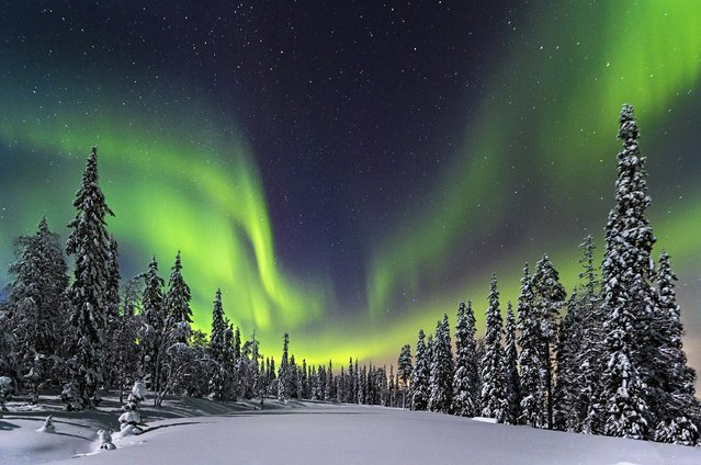 """""""Forest lights"""". Aurora Borealis over the forest of the Pyhae Luosto National Park, Finland. (Photo and caption by Nicholas Roemmelt/National Geographic Traveler Photo Contest)"""