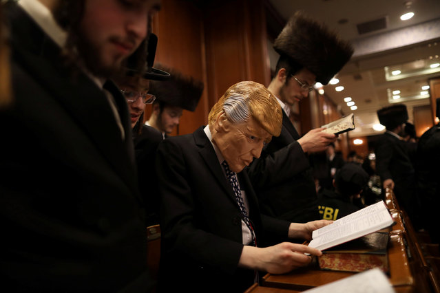 An ultra orthodox Jewish man dressed in the likeness of U.S. President Donald Trump takes part in the reading from the Book of Esther ceremony performed on the Jewish holiday of Purim, a celebration of the Jews' salvation from genocide in ancient Persia, as recounted in the Book of Esther, in Jerusalem March 12, 2017. (Photo by Ammar Awad/Reuters)