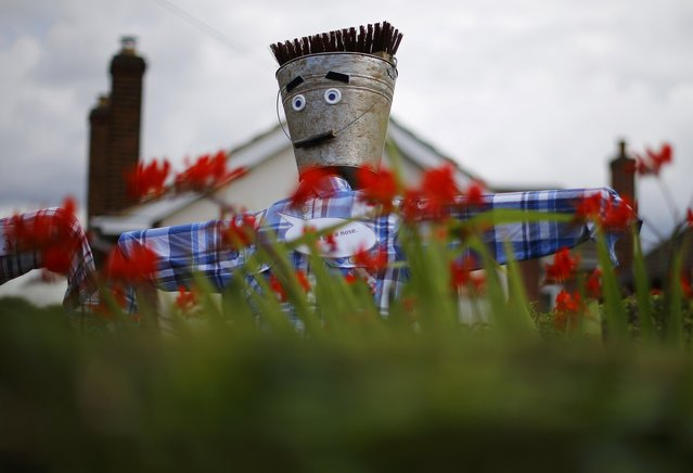 A scarecrow looks over a hedge during the Scarecrow Festival in Heather, Britain July 29, 2015. (Photo by Darren Staples/Reuters)