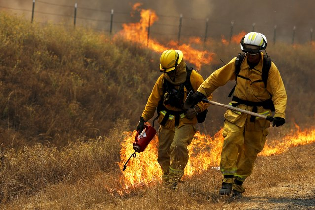 A Cal Fire firefighter sets a backfire with a driptorch along Highway 20 during the Rocky Fire near Lower Lake, California August 3, 2015. The blaze, which has scorched about 60,000 acres (24,281 hectares) east of Lower Lake, a town about 110 miles (180 km) north of San Francisco, was the fiercest of 20 large fires being battled by 9,000 firefighters across the state, officials said. (Photo by Stephen Lam/Reuters)