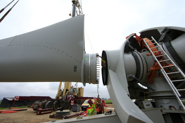 Employees work on a rotor blade assembling to the hub of a turbine in Meneslies, France July 22, 2014. (Photo by Benoit Tessier/Reuters)