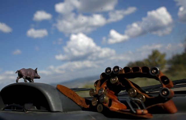 A small figurine of a wild boar is glued on the dashboard of a hunter's car next to some rounds during the first day of the Italy hunting season in Castell'Azzara, Tuscany, central Italy, September 20, 2015. (Photo by Max Rossi/Reuters)