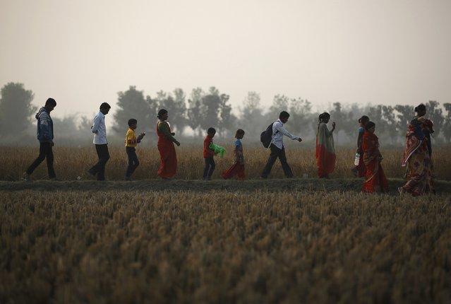 "People walk along a field near the enclosure for buffalos awaiting sacrifice on the eve of the sacrificial ceremony for the ""Gadhimai Mela"" festival in Bariyapur November 27, 2014. (Photo by Navesh Chitrakar/Reuters)"