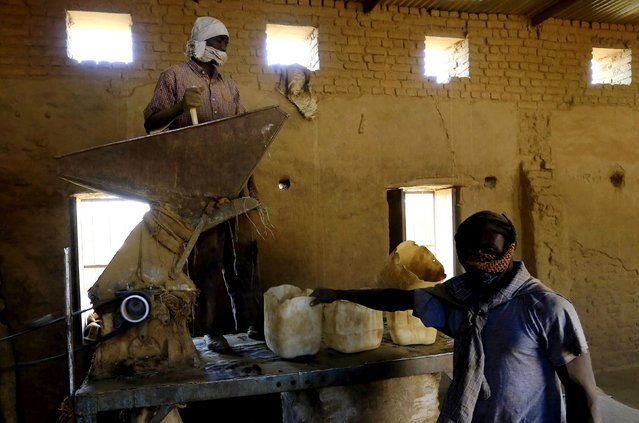 Workers prepare to grind tobacco inside a snuff tobacco factory in el-Fasher, in North Darfur February 5, 2015. (Photo by Mohamed Nureldin Abdallah/Reuters)