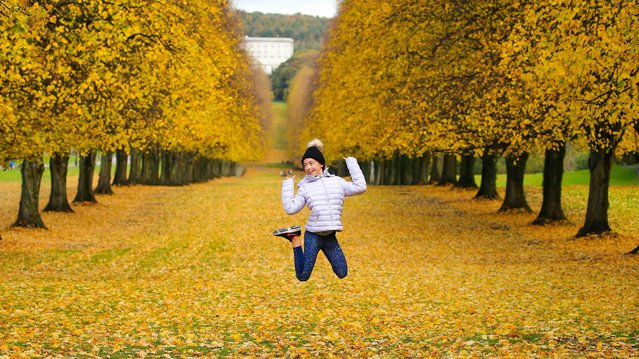 Abbie Jackson, 12, from Dunmarry, enjoying Stormont estate in Northern Ireland's capital Belfast on October 22, 2020 as the leaves turnю (Photo by Jonathan Porter/PRESSEYE)