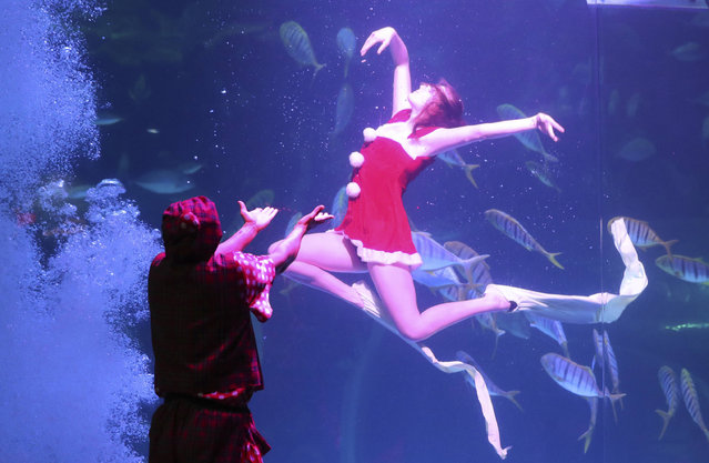 A diver wearing Santa Claus costume in a water tank performs with a clown outside the tank during a part of events to celebrate the upcoming Christmas at the Aqua Planet aquarium in Goyang, South Korea, Friday, December 23, 2016. (Photo by Lee Jin-man/AP Photo)