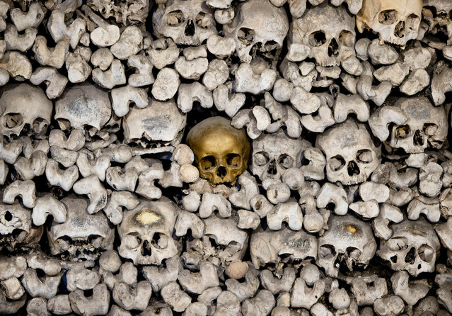 A skull painted gold stands out from amongst the 20,000 skeletons stored in the church ossuary of the Katharinenkirche in Oppenheim some 50 kilometers (30 miles) south of Frankfurt, Germany, Monday, January 7, 2019. (Photo by Michael Probst/AP Photo)