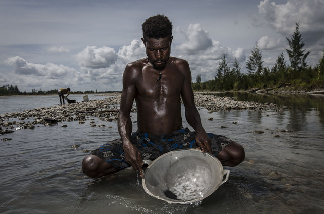 A illegal gold miner of Kamoro people, Tinus, pan for gold on February 4, 2017 in Timika, Papua Province, Indonesia. (Photo by Ulet Ifansasti/Getty Images)
