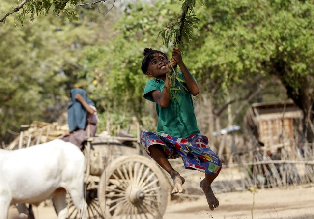 An Htaw Ni , 11, who sports an ancient hairstyle known as Sanyitwine, plays with a branch of a tamarind tree at Sat Sat Yo village in Nyaung Oo township, near Myanmar's ancient city Bagan April 17, 2015. (Photo by Soe Zeya Tun/Reuters)