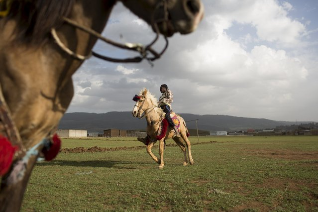 Boys ride horses used to carry visitors for short rides on the outskirts of Addis Ababa, Ethiopia, May 17, 2015. (Photo by Siegfried Modola/Reuters)