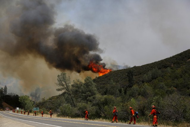 Inmate firefighters stand along Highway 20 during the Rocky Fire near Lower Lake, California August 3, 2015. (Photo by Stephen Lam/Reuters)
