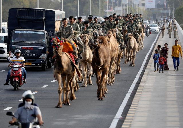Border Security Force (BSF) soldiers ride their camels as they take part in a rehearsal for a road show ahead of the visit of U.S. President Donald Trump, in Ahmedabad, India, February 21, 2020. (Photo by Amit Dave/Reuters)