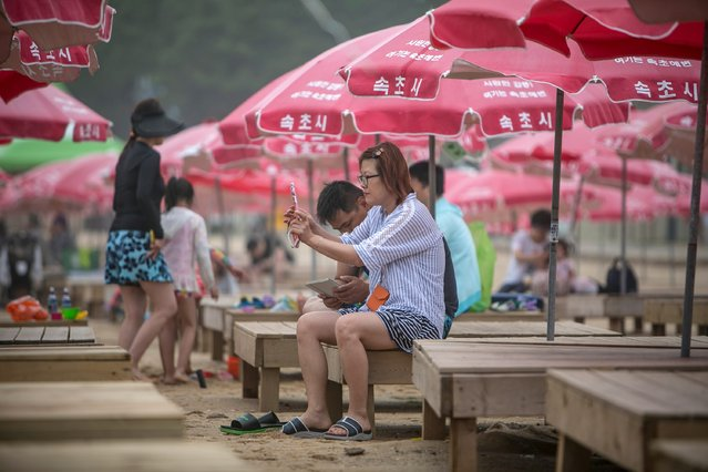South Koreans play Pokemon Go on July 15, 2016 in Sokcho, South Korea. (Photo by Jean Chung/Getty Images)