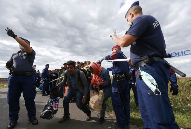 Hungarian policemen guide migrants as they wait for buses in a makeshift camp at a collection point in the village of Roszke, Hungary, September 7, 2015. (Photo by Laszlo Balogh/Reuters)