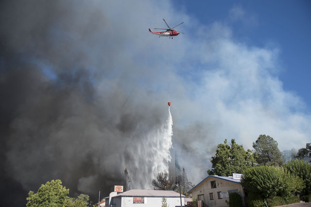 Firefighters make a drop on a wildfire near Lower Lake, Calif., Sunday, August 14, 2016. The fire was creating its own weather pattern and shifted northward into Lower Lake in the afternoon, said Suzie Blankenship, a spokeswoman for the California Department of Forestry and Fire Protection. (Photo by Hector Amezcua/The Sacramento Bee via AP Photo)