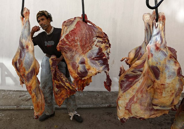 An Afghan butcher slices meat off cows on the first day of Eid al-Adha in Kabul October 4, 2014. Muslims around the world celebrate Eid al-Adha to mark the end of the haj pilgrimage by slaughtering sheep, goats, camels and cows to commemorate Prophet Abraham's willingness to sacrifice his son, Ismail, on God's command. (Photo by Mohammad Ismail/Reuters)