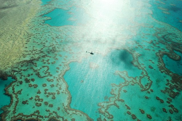 """""""A ride over the reef"""". Whilst taking in the amazing scene of Heart Reef in the Great Barrier Reef a helicopter dived in beneath us to take a better view... Photo location: Great Barrier Reef, Australia. (Photo and caption by Wayne Pope/National Geographic Photo Contest)"""