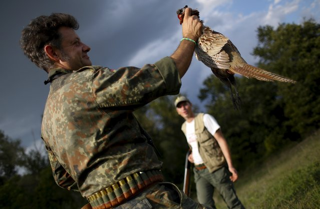 A hunter holds a shot male pheasant during the first day of the Italy hunting season in Castell'Azzara, Tuscany, central Italy, September 20, 2015. (Photo by Max Rossi/Reuters)