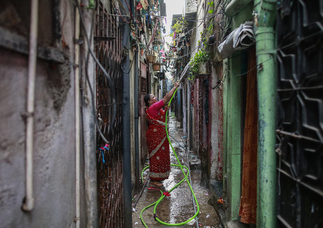 A woman waters the plants outside her house in an alley at a slum in Mumbai October 28, 2014. (Photo by Danish Siddiqui/Reuters)