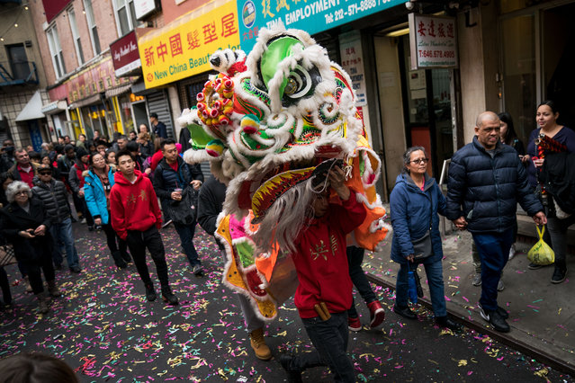 A man dressed as a dragon makes his way through Chinatown during a cultural festival to mark the first day of the Lunar New Year, February 16, 2018 in New York City. The 2018 Chinese New Year, which is the year of the dog, begins on Friday and celebrations will last for over two weeks. (Photo by Drew Angerer/Getty Images)