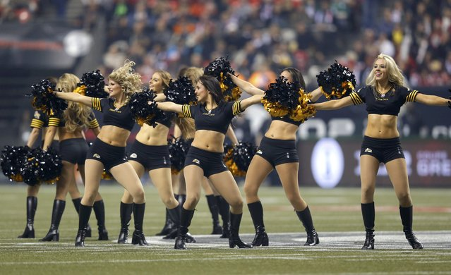 Hamilton Tiger Cats cheerleaders perform during the CFL's 102nd Grey Cup football championship against the Calgary Stampeders in Vancouver, British Columbia, November 30, 2014. (Photo by Todd Korol/Reuters)