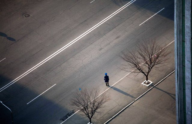 In this April 13, 2011 photo, a North Korean traffic police officer stands along a street in central Pyongyang, North Korea. (Photo by David Guttenfelder/AP Photo)