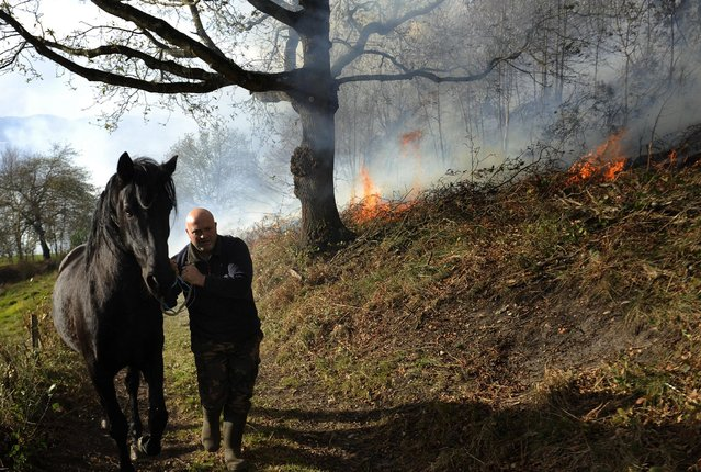 A man evacuates his horse as a forest fire approaches in the village of Andarujo, near Oviedo, northern Spain, December 28, 2015. (Photo by Eloy Alonso/Reuters)