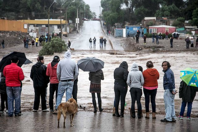 Locals gather near a flooded road after heavy rains in Copiapo city, March 25, 2015. Heavy rains hit Chilean northern cities at the Atacama region, in an unusual weather phenomenon,with no report of deaths or injuries, according to local media. (Photo by Reuters/Stringer)