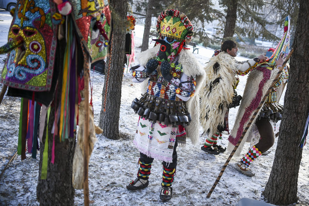 """A dancer, known as """"Kukeri"""", prepare before performing on January 27, 2019 during the International Festival of the Masquerade Games in Pernik, near Sofia. (Photo by Nikolay Doychinov/AFP Photo)"""