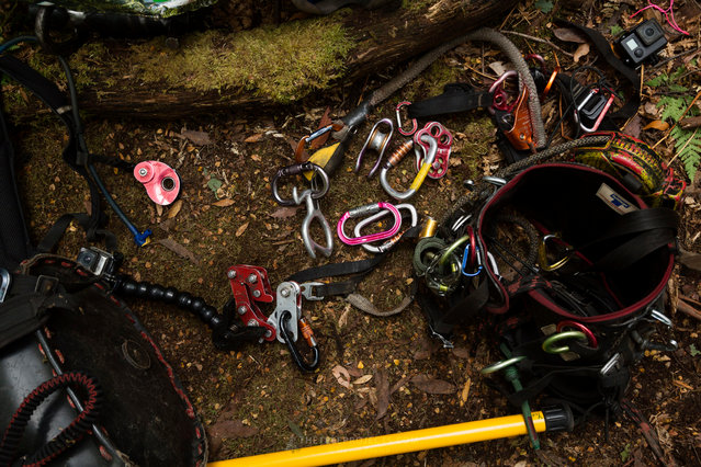 Some of the climbing gear used to install and operate the camera suspension system. Along with camera equipment and personal climbing gear, more than 100kg of equipment had to be carried into the tree site. (Photo by Steven Pearce/The Tree Projects/The Guardian)