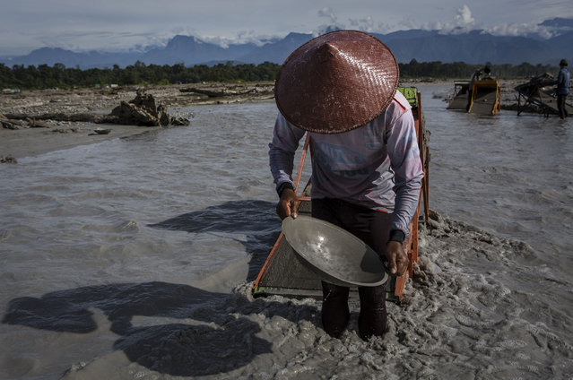 A Illegal gold miner pan for gold at the Aikwa river on February 4, 2017 in Timika, Papua Province, Indonesia. (Photo by Ulet Ifansasti/Getty Images)
