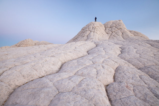 """A man stands on top of wind-carved sandstone shapes called """"brain rock"""" in White Pocket, Arizona. (Photo by David Clapp/Barcroft Images)"""