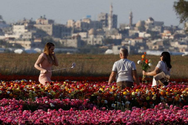 People pick buttercup flowers in a field near Kibbutz Nir Yitzhak in southern Israel, as Gaza Strip is seen at the background April 18, 2017. (Photo by Amir Cohen/Reuters)