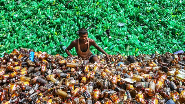 A Bangladeshi plastic recycling factory worker on November 17, 2019. Caught between a sea of green and brown plastic bottles, this picture of a recycling worker was shortlisted in a competition highlighting the fight against litter around the globe. TMohammed Rubel  from Bangladesh took the picture of the man amongst the bottles at a recycling centre. (Photo by Mohammed Rubel/Action Press/SWNS)
