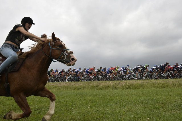 A horse rider is pictured in front of the pack riding during the 234.5 km seventh stage of the 101st edition of the Tour de France cycling race on July 11, 2014 between Epernay and Nancy, northeastern France. (Photo by Jeff Pachoud/AFP Photo)