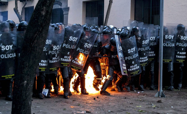 Demonstrators clash with police during a protest called by workers' unions ahead of a nationwide strike, in Quito, Ecuador, 13 August 2015. The strike will be led by unions and also will be attended by groups of indigenous Ecuadorians to protest against the government of President Rafael Correa. (Photo by Jose Jacome/EPA)