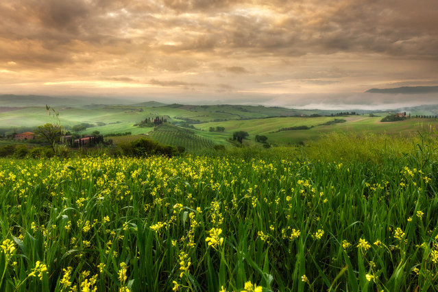 Tuscan farmland in Italy, May 2014. The beautiful pictures were taken by Alberto Di Donato who has a huge passion for the Tuscan landscape and is inspired by the Renaissance artists who painted the same landscapes. (Photo by Alberto Di Donato/HotSpotMedia)