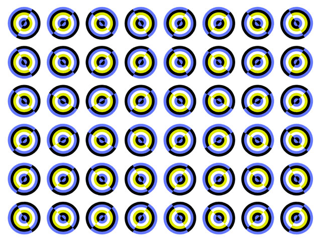 Buttons appear to move. (Photo by Akiyoshi Kitaoka/Caters News)