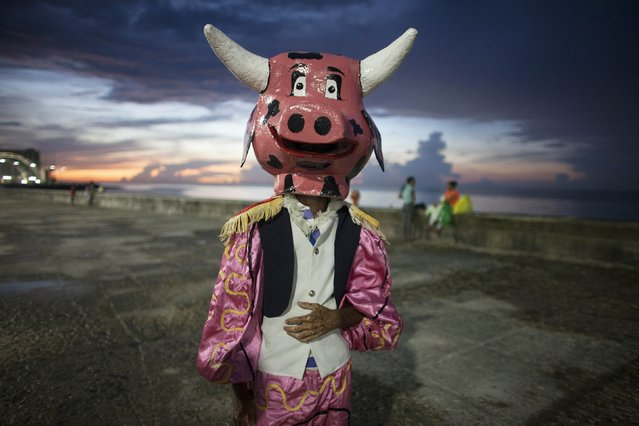 A reveller wearing a mask poses before performing at a carnival parade in Havana August 8, 2014. (Photo by Alexandre Meneghini/Reuters)