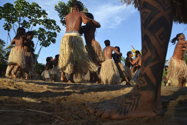 Yawanawa Indians dance during the Mariri Festival in the village of Mutum, in the Amazon forest of Acre state, August 11, 2014. The Yawanawa people, who live on a reservation in northwestern Brazil that was demarcated in 1933, spend five days each August celebrating their way of life through dance, art, and cultural expression. (Photo by Odair Leal/Reuters)