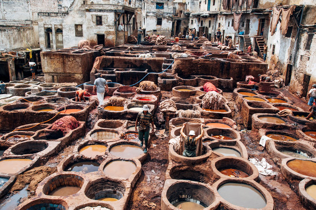 """The Tanneries Of Fez"". The hard workers of the Fez tanneries. Photo location: Morocco. (Photo and caption by Ed Schofield/National Geographic Photo Contest)"